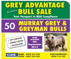 Grey Advantage 2015 Web ad