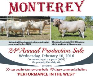Monterey ad 2016