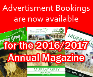 Magazine Bookings ad